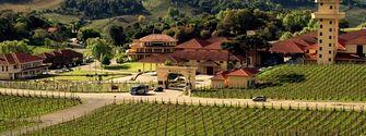 Rio Grande do Sul: Rota do Vinho